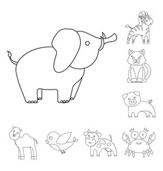 An unrealistic outline animal icons in set vector