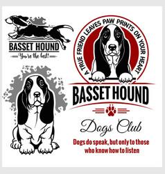 basset hound - set for t-shirt logo vector image