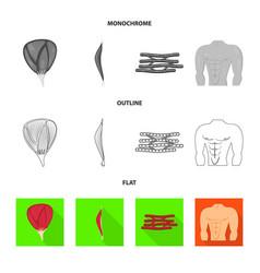 Design fiber and muscular symbol set of vector
