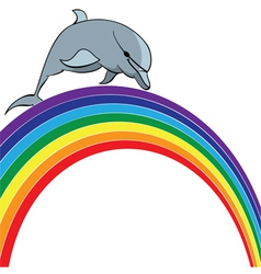 dolphin and rainbow vector image