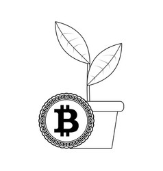 Growth bitcoin price line style vector