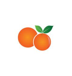 orange fruit design design template vector image