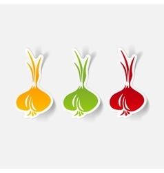 Realistic design element onion vector