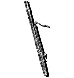 bassoon vector image