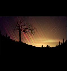 Evening landscape with orange sunset starry sky vector