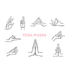 hand drawn set hands in mudras yoga vector image