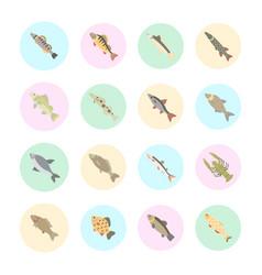 Set flat icons freshwater fish vector