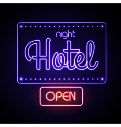 Neon sign Night Hotel vector image