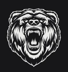 roaring bear vector image vector image