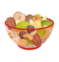 A mixture of different kinds of nuts different vector