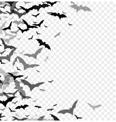 Black silhouette of bats isolated on transparent vector