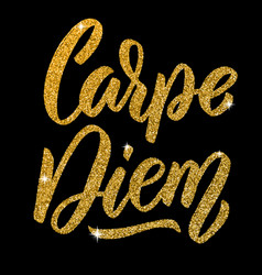 Carpe diem hand drawn lettering phrase isolated vector