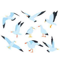 Flying on the water and standing seagulls cartoon vector