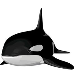 Orca2 vector