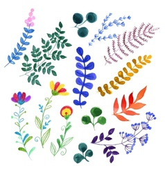 Set of beautiful watercolor flowers vector image