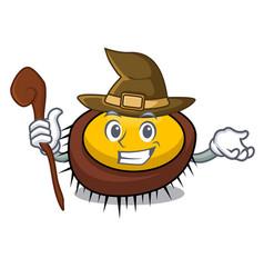 Witch sea urchin mascot cartoon vector