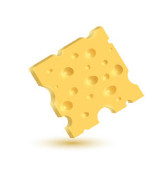 the cheese isolated vector image