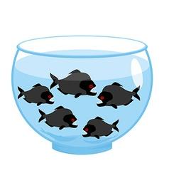 Aquarium with piranhas Dangerous evil toothy fish vector image