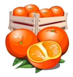 Box of fresh ripe orange with leaves vector