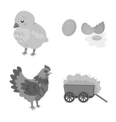 Design organic and animal logo set vector