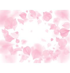 pink sakura petals falling flower vector image