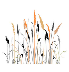 Silhouette of the steppe grass vector