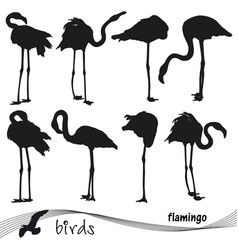 silhouettes of flamingos vector image