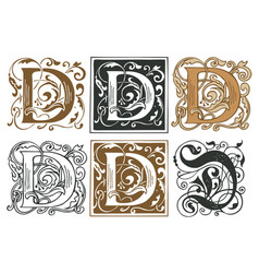 Vintage initial letter d with baroque decorations vector
