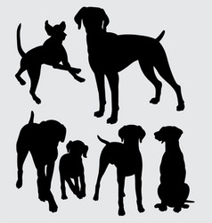 Viszla dog animal silhouette vector