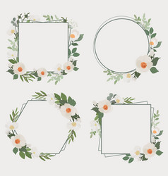 white camellia flower bouquet wreath frame vector image
