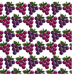 grapes background icon stock vector image vector image