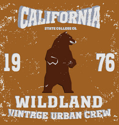 California vintage style vector