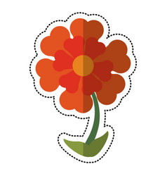 cartoon flower ornament natural vector image