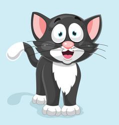 cat vector image
