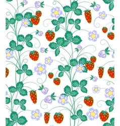 hand drawn seamless strawberry pattern vector image vector image