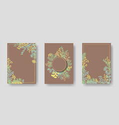 invitation cards with herbal twigs vector image
