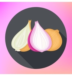 Onion Flat design Isolated vegetables vector image