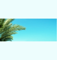 palm branches on blue summer sky background long vector image