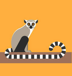 Sitting lemur vector