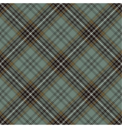 Tartan plaid pattern background vector image