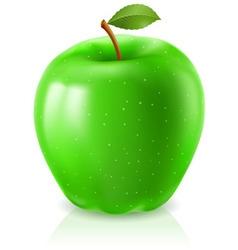 ripe green apple vector image vector image