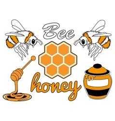 bee honey set vector image