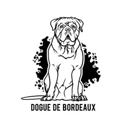 Dogue de bordeaux - dog happy face paw puppy pup vector