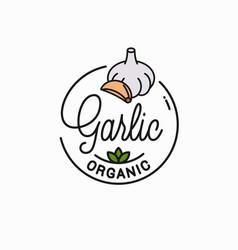 Garlic bulb logo round linear cloves vector