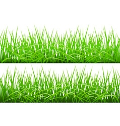 Green grass borders set vector