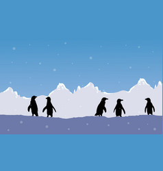Landscape snow mountain with penguin silhouette vector