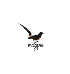Magpie-bird-logo-template vector