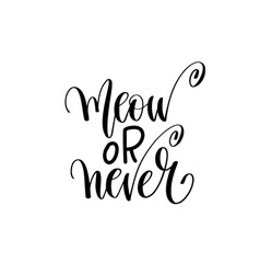 Meow or never - hand lettering inscription text vector