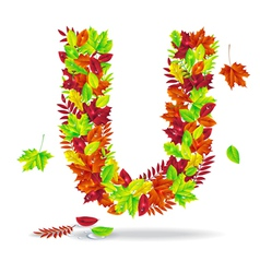 The letters of autumn leaves with drops of water vector