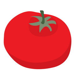 tomato flat isolated object on a white background vector image